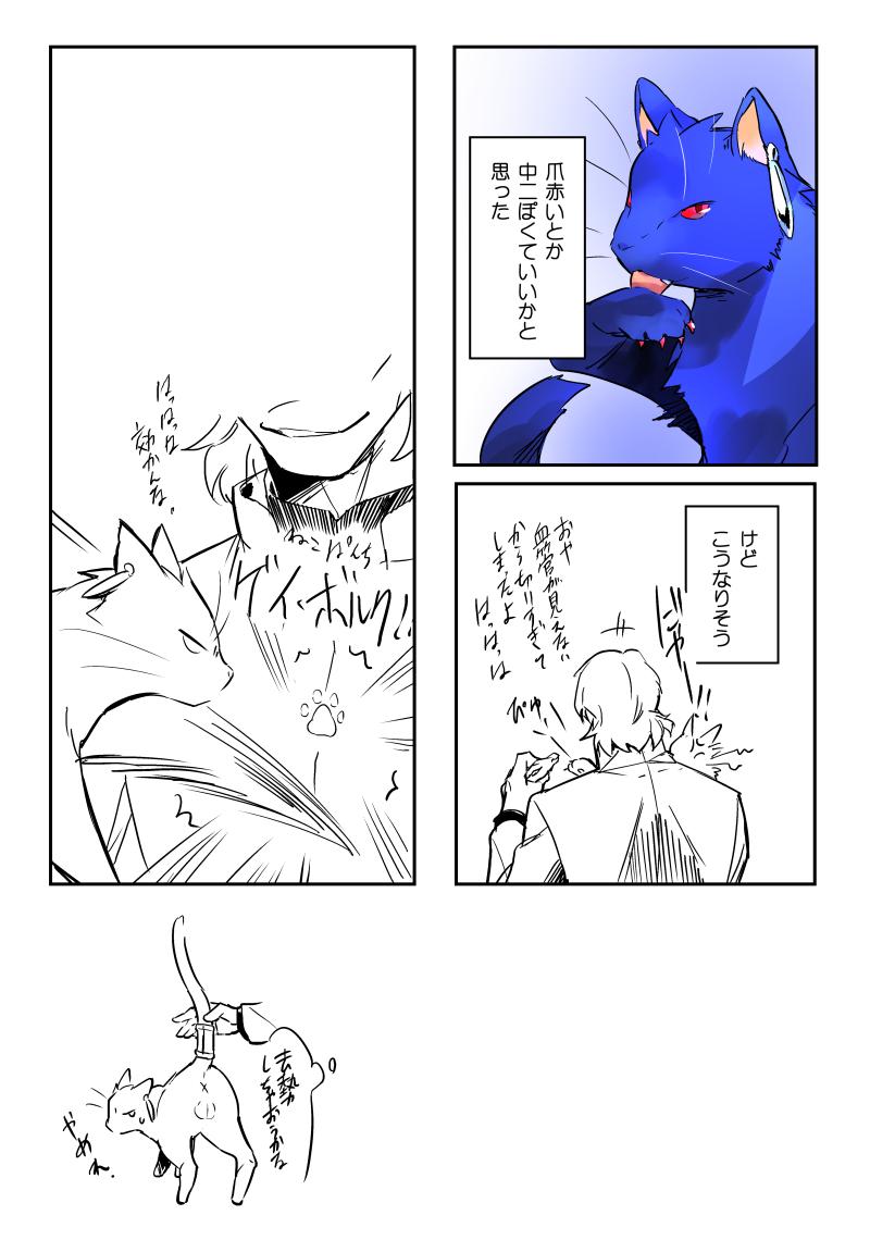 にゃんさー2